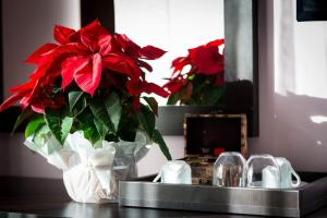 Pridvorul Haiducilor, Hotels  Tîrgu Ocna - big - 22