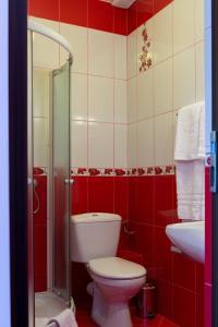 Pridvorul Haiducilor, Hotels  Tîrgu Ocna - big - 53