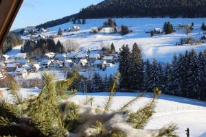 Haus am Wald, Апартаменты  Байрсброн - big - 54