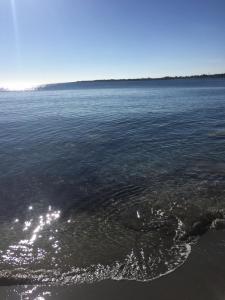 Oasi sul Mare - AbcAlberghi.com