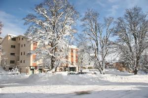 Grand Hotel Europa, Отели  Ривизондоли - big - 34