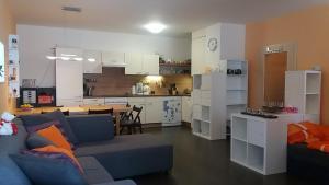 Apartments Klinovec, Apartmány  Loučná pod Klínovcem - big - 54