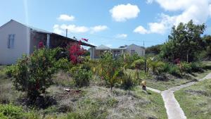 Hebergement Vue Sur Mer, Vendégházak  Port Mathurin - big - 7
