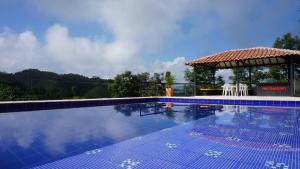 Hacienda La Chiquita, Nyaralók  Manizales - big - 40