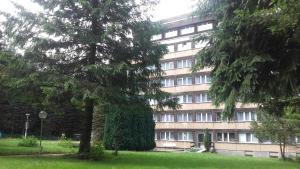 Ferienhotel Markersbach, Hotely  Markersbach - big - 27