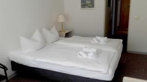 Ferienhotel Markersbach, Hotely  Markersbach - big - 26
