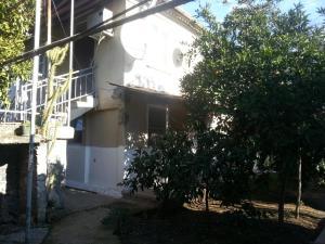 Guest house Yuzhnaya Palmira, Vendégházak  Picunda - big - 22