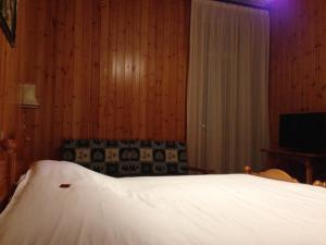 Hotel Vioz, Hotely  Peio Fonti - big - 20
