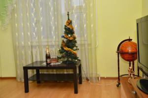 Apartments u Olgi, Apartmány  Nyasvizh - big - 8