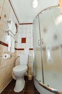 SPA Villa Jasmin, Rezorty  Truskavets - big - 17