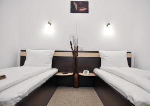 Pensiunea Almada, Guest houses  Vladimirescu - big - 3