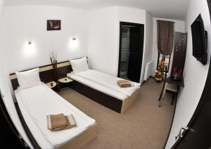 Pensiunea Almada, Guest houses  Vladimirescu - big - 4