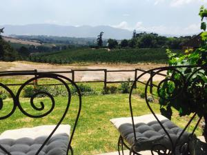 Cheverells Farm, Agriturismi  Grabouw - big - 16