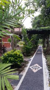 Medori Putih Homestay, Priváty  Uluwatu - big - 15
