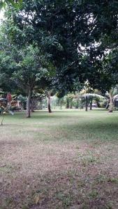 Medori Putih Homestay, Priváty  Uluwatu - big - 16