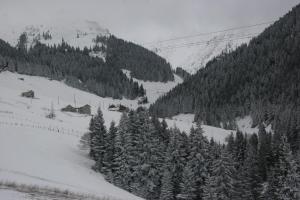 Azra Dağ Evi̇, Alpesi faházak  Güzelce - big - 1