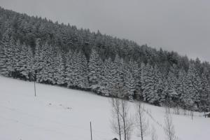 Azra Dağ Evi̇, Alpesi faházak  Güzelce - big - 34