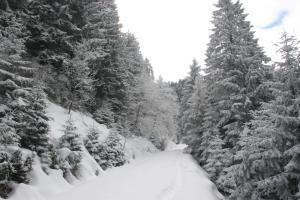 Azra Dağ Evi̇, Alpesi faházak  Güzelce - big - 38