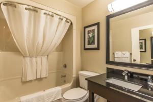 Non-Smoking Comfort Care Single Queen Room