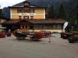 Hotel Vioz, Hotely  Peio Fonti - big - 1
