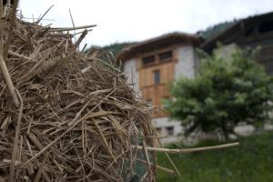 Agricampeggio Ai Gaggi - AbcAlberghi.com