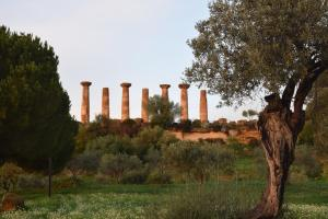 B&B Kolymbetra, Bed and Breakfasts  Agrigento - big - 60