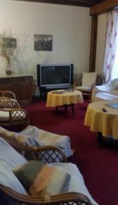 Hôtel Oberland, Hotely  Le Bourg-d'Oisans - big - 28