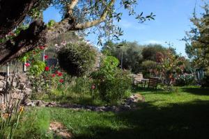 Il Vecchioliveto di Ornella, Bed & Breakfasts  Marrùbiu - big - 81