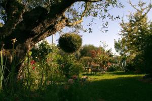 Il Vecchioliveto di Ornella, Bed & Breakfasts  Marrùbiu - big - 48