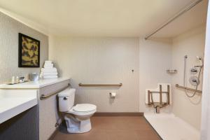 King Room - Mobile/Hearing Accessible w/ Roll In-Shower