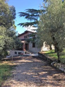 Villa Edoardo - La casa nell'oliveto - AbcAlberghi.com
