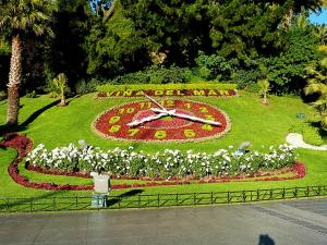 B&B Sappheiros, Bed and breakfasts  Viña del Mar - big - 30