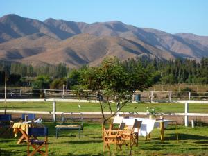 Valle de Elqui B&B