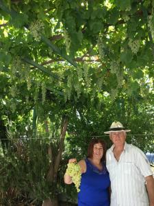 Patmos Villas, Ferienwohnungen  Grikos - big - 1