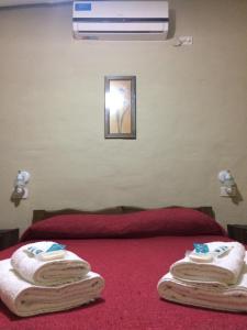 Ayres de Cuyo, Apartments  San Rafael - big - 40