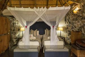 Thamalakane River Lodge, Lodge  Maun - big - 4