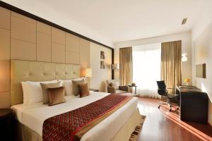 Radisson Blu Pune Hinjawadi, Hotel  Pune - big - 2