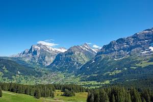Aspen Alpine Lifestyle Hotel, Hotely  Grindelwald - big - 37