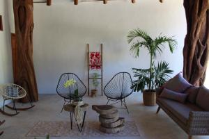 Tierra Mia Boutique Hotel, Hotely  Holbox Island - big - 43