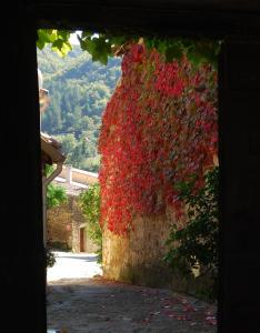 Le Jardin de la Sals (Ecluse au Soleil), Bed & Breakfasts  Sougraigne - big - 66