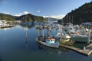 Picton Yacht Club Hotel, Hotely  Picton - big - 27