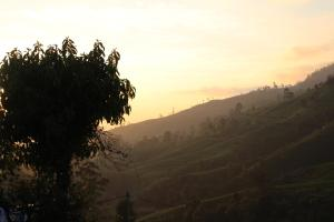 Cool Mount Guest, Alloggi in famiglia  Nuwara Eliya - big - 46