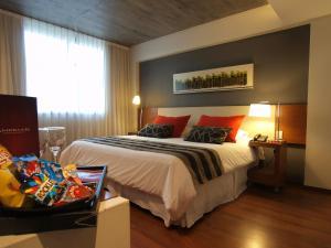 Amérian Tucuman Apart & Suites, Hotely  San Miguel de Tucumán - big - 5