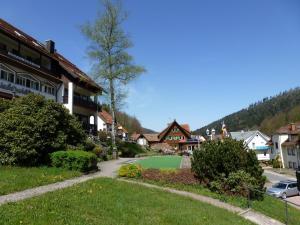 Waldschlösschen, Hotely  Bad Herrenalb - big - 33