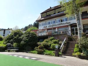 Waldschlösschen, Hotely  Bad Herrenalb - big - 43