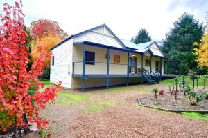 Camellia Lodge, Holiday homes  Harrietville - big - 5