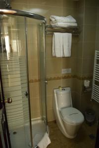 Hotel Arca lui Noe, Hotel  Sinaia - big - 16
