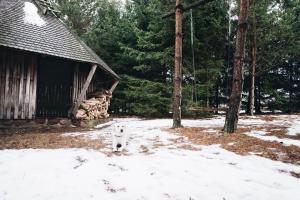 Pakaso sodyba Kirdeikiuose, Ville  Kirdeikiai - big - 44