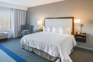 Hampton Inn & Suites-Dallas-Richardson