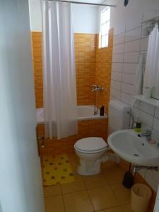 Apartments Kujundžić, Appartamenti  Kaprije - big - 11